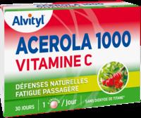 Govital Acerola 1000 à MONTEREAU-FAULT-YONNE