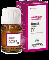 Lehning Arnica Complexe N° 1 Solution Buvable En Gouttes Fl/30ml à MONTEREAU-FAULT-YONNE