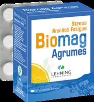 Lehning Biomag Comprimés à Croquer Agrumes B/90 à MONTEREAU-FAULT-YONNE