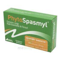 Phytospasmyl Caps B/60 à MONTEREAU-FAULT-YONNE