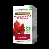 Arkogélules Vigne Rouge Bio Gélules Fl/45 à MONTEREAU-FAULT-YONNE