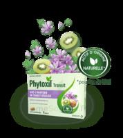 Phytoxil Transit Comprimés B/20 à MONTEREAU-FAULT-YONNE