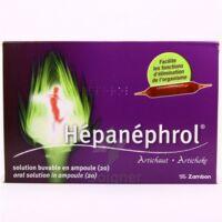 HEPANEPHROL, solution buvable en ampoule à MONTEREAU-FAULT-YONNE