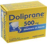 DOLIPRANE 500 mg Poudre pour solution buvable en sachet-dose B/12 à MONTEREAU-FAULT-YONNE