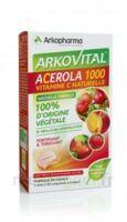 Arkovital Acérola 1000 Comprimés à Croquer B/30 à MONTEREAU-FAULT-YONNE