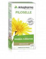 Arkogélules Piloselle Gélules Fl/45 à MONTEREAU-FAULT-YONNE