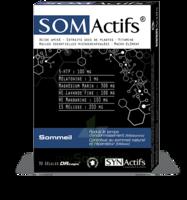 Synactifs Somactifs Gélules B/30 à MONTEREAU-FAULT-YONNE