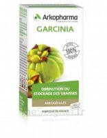 Arkogélules Garcinia Gélules Fl/45 à MONTEREAU-FAULT-YONNE