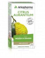 Arkogélules Citrus aurantium Gélules Fl/45 à MONTEREAU-FAULT-YONNE