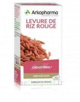Arkogélules Levure De Riz Rouge Gélules Fl/45 à MONTEREAU-FAULT-YONNE