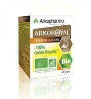 Arkoroyal 100% Gelée royale bio Gelée Pot/40g à MONTEREAU-FAULT-YONNE