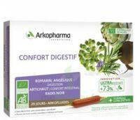 ARKOFLUIDE BIO ULTRAEXTRACT Solution buvable confort digestif 20 Ampoules/10ml à MONTEREAU-FAULT-YONNE