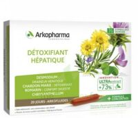 Arkofluide Bio Ultraextract Solution buvable détoxifiant hépatique 20 Ampoules/10ml à MONTEREAU-FAULT-YONNE