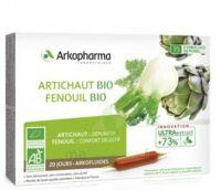Arkofluide Bio Ultraextract Artichaut Fenouil Solution Buvable 20 Ampoules/10ml à MONTEREAU-FAULT-YONNE