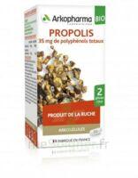 Arkogélules Propolis Bio Gélules Fl/45 à MONTEREAU-FAULT-YONNE