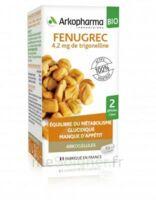 Arkogélules Fenugrec Bio Gélules Fl/40 à MONTEREAU-FAULT-YONNE
