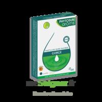 Phytosun Arôms pastilles sans sucre gorge arôme miel x 24 à MONTEREAU-FAULT-YONNE