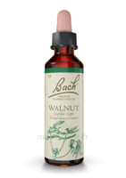 Fleurs De Bach® Original Walnut - 20 Ml à MONTEREAU-FAULT-YONNE