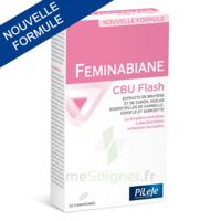Pileje Feminabiane Cbu Flash - Nouvelle Formule 20 Comprimés à MONTEREAU-FAULT-YONNE