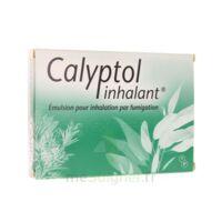 CALYPTOL INHALANT, émulsion pour inhalation par fumigation à MONTEREAU-FAULT-YONNE