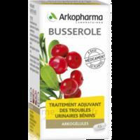 Arkogelules Busserole Gélules Fl/45 à MONTEREAU-FAULT-YONNE