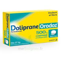 Dolipraneorodoz 500 Mg, Comprimé Orodispersible à MONTEREAU-FAULT-YONNE