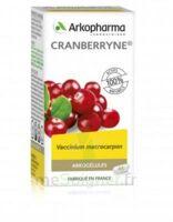 Arkogélules Cranberryne Gélules Fl/45 à MONTEREAU-FAULT-YONNE