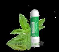 Puressentiel Respiratoire Inhaleur Respiratoire aux 19 Huiles Essentielles - 1 ml