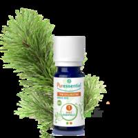 Puressentiel Huiles essentielles - HEBBD Pin sylvestre BIO* - 5 ml à MONTEREAU-FAULT-YONNE