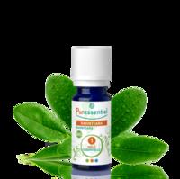 Puressentiel Huiles essentielles - HEBBD Ravintsara BIO* - 5 ml à MONTEREAU-FAULT-YONNE