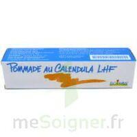 CALENDULA LHF POM T/20G à MONTEREAU-FAULT-YONNE