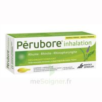 PERUBORE Caps inhalation par vapeur inhalation Plq/15 à MONTEREAU-FAULT-YONNE