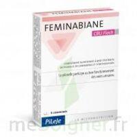 Feminabiane Cbu Flash Comprimés à MONTEREAU-FAULT-YONNE
