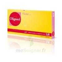 Oligosol Fluor Solution Buvable En Ampoule 14amp/2ml à MONTEREAU-FAULT-YONNE