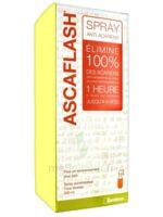 Ascaflash Spray anti-acariens 500ml à MONTEREAU-FAULT-YONNE