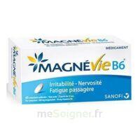 Magnevie B6 100 Mg/10 Mg Comprimés Pelliculés Plaq/60 à MONTEREAU-FAULT-YONNE