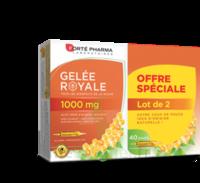 Forte Pharma Gelée royale 1000 mg Solution buvable 2*B/20 Ampoules/10ml à MONTEREAU-FAULT-YONNE