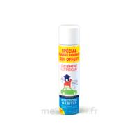 Clément Thékan Solution insecticide habitat Spray Fogger/300ml à MONTEREAU-FAULT-YONNE