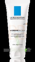 Hydreane Bb Crème Crème Teintée Rose 40ml à MONTEREAU-FAULT-YONNE
