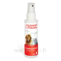 Clément Thékan Caniderma Solution externe cicatrisant Spray/125ml à MONTEREAU-FAULT-YONNE