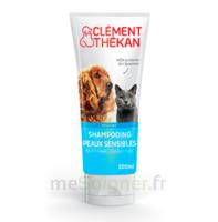 Clément Thékan Shampooing peaux sensibles T/200ml à MONTEREAU-FAULT-YONNE
