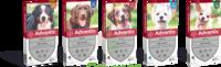 Advantix Solution externe grand chien 25-40kg 4 Pipettes/2,5ml à MONTEREAU-FAULT-YONNE