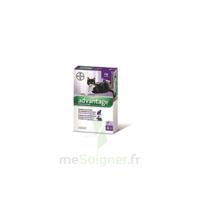 Advantage 80 Solution Application Locale Lapin-chat Moins 4kg 4 Pipettes/0,4ml à MONTEREAU-FAULT-YONNE