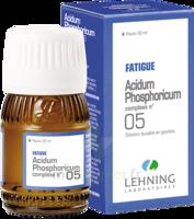Lehning ACIDUM PHOSPHORICUM COMPLEXE N°5 Solution buvable en gouttes Fl/30ml à MONTEREAU-FAULT-YONNE