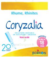 Boiron Coryzalia Solution Buvable Unidose B/20 à MONTEREAU-FAULT-YONNE