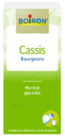 Boiron Cassis Bourgeons Extrait glycériné Fl/60ml à MONTEREAU-FAULT-YONNE