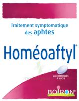 Boiron Homéoaftyl Comprimés à MONTEREAU-FAULT-YONNE
