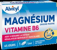Govital Magnésium Vitamine B6 Comprimés B/45 à MONTEREAU-FAULT-YONNE