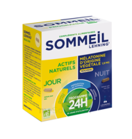 Lehning Sommeil 24h Gélules B/30+30 à MONTEREAU-FAULT-YONNE