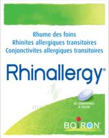 Boiron Rhinallergy Comprimés B/40 à MONTEREAU-FAULT-YONNE